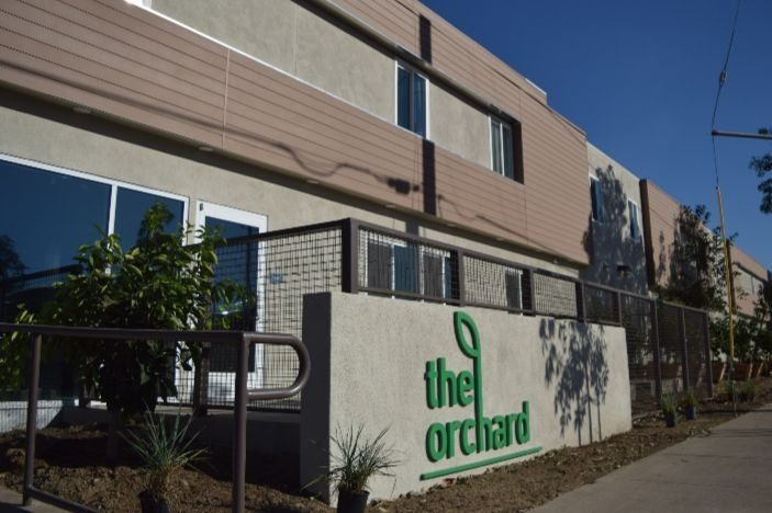 The Orchard 2